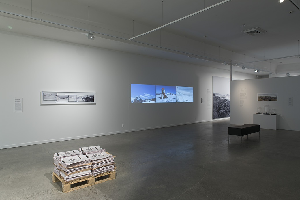 THIS TIME OF USEFUL CONSCIOUSNESS—POLITICAL ECOLOGY NOW, INSTALLATION VIEW. COURTESY OF THE DOWSE ART MUSEUM. PHOTO: JOHN LAKE