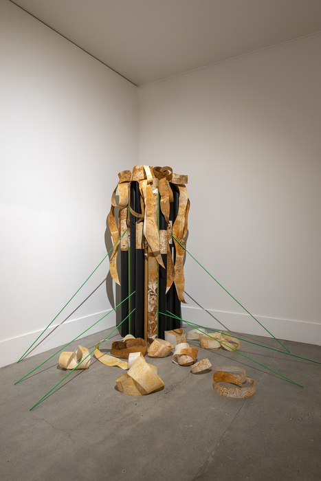Pauline Rhodes, Intensum/Many Voices , 2018. Installation View. Courtesy of the artist. Photographer John Lake.