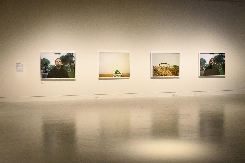 Ways of Being, installation view, Ngahuia Harrison. Courtesy of The Dowse Art Museum. Photo: Elias Rodriguez