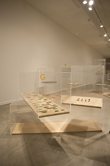 Installation view. Photographer John Lake.
