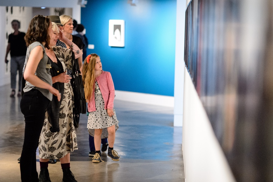 Gavin Hipkins: The Domain opening 24th November 2017. Photo courtesy of The Dowse Art Museum. Photo: Mark Tantrum.