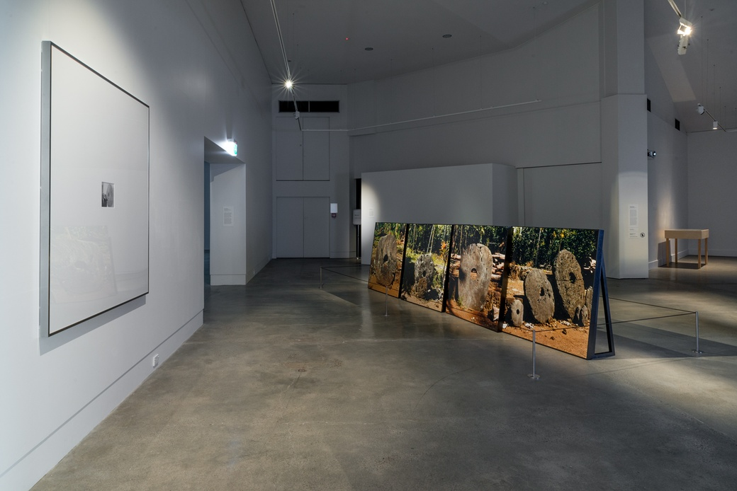 NICHOLAS MANGAN: LIMITS TO GROWTH. Limits to Growth. INSTALLATION VIEW. COURTESY OF THE DOWSE ART MUSEUM. PHOTOGRAPHER: SHAUN MATTHEWS