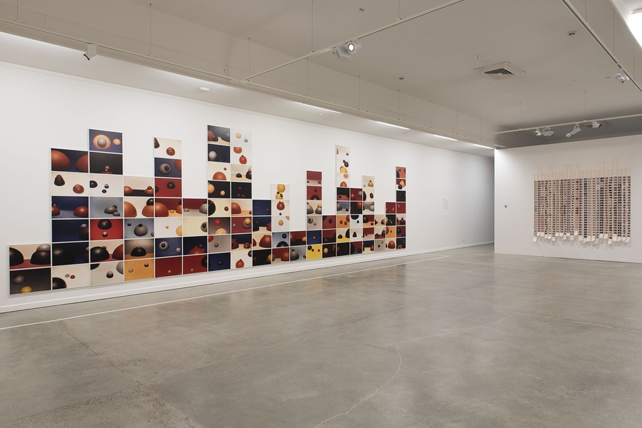 Gavin Hipkins: The Domain.INSTALLATION VIEW. COURTESY OF THE DOWSE ART MUSEUM. PHOTO: John Lake