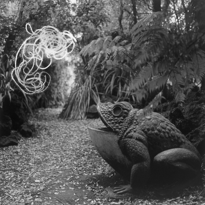 Gavin Hipkins, The Sanctuary: Auckland (Path), 2004