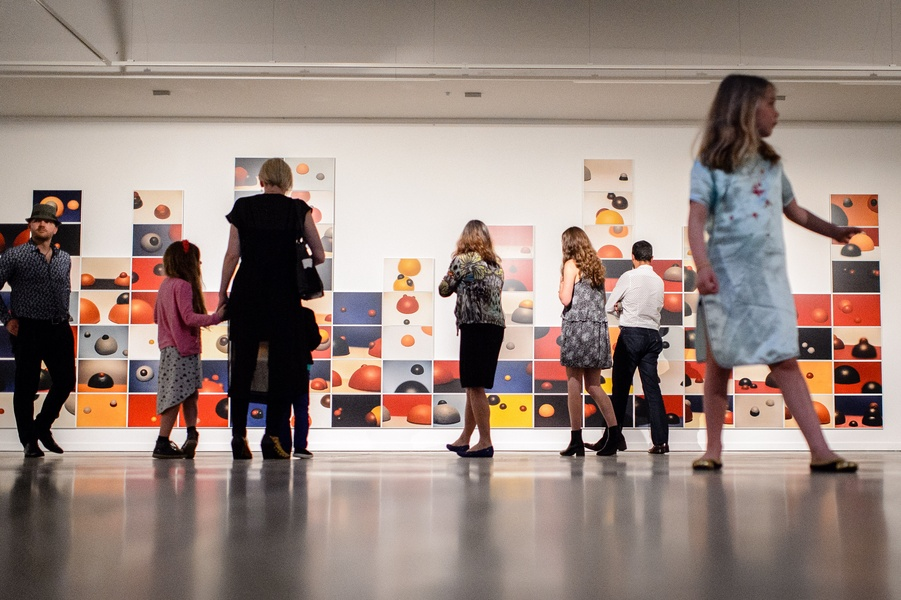Gavin Hipkins: The Domain opening 24th November 2017. The Colony, 2000-2002. (Install Image) Collection of the Museum of New Zealand Te Papa Tongarewa.  Photo courtesy of The Dowse Art Museum. Photo: Mark Tantrum.